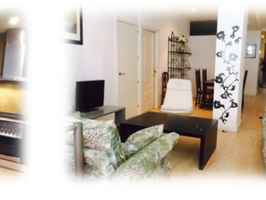 apartaments for rent in Madrid , housing in Madrid